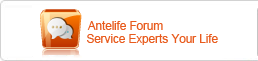 Antelife Wordpress Service Experts you life